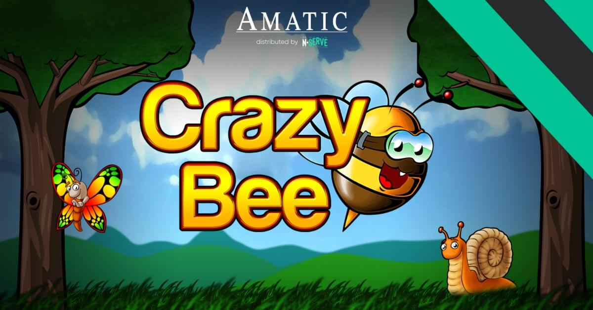 Latest-N-serve-Games-Crazy-Bee